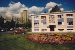MDF-1993